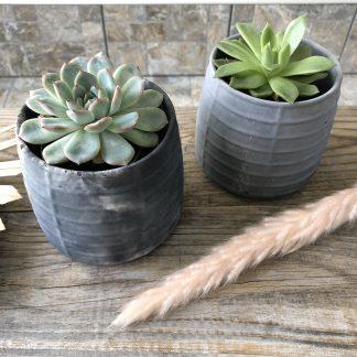 Mimipots - pots de béton