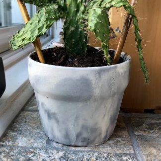 pot plante les mimipots béton