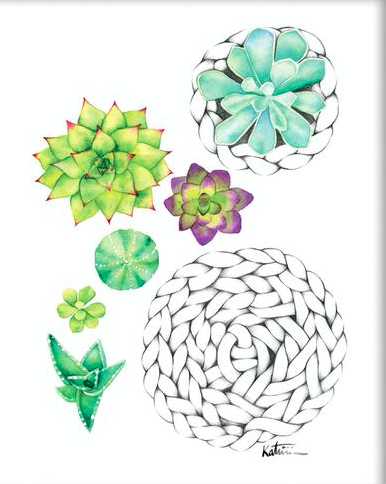 katrinn illustration carte sans texte minis plantes succulentes
