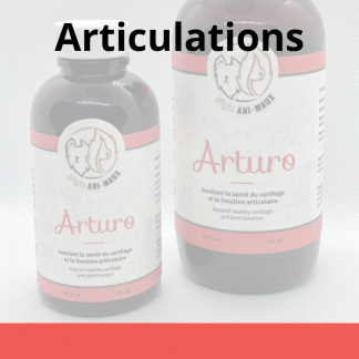 phyto ani-maux arturo